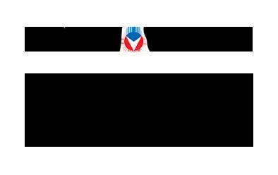 Michel-Vaillant-logo